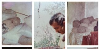 Goat hair weaving (hair is plucked to get rid it of impurities, then manually tweaked by using a wheel, and then woven on a vertical loom (Study archive of Maha Kayal 1984)